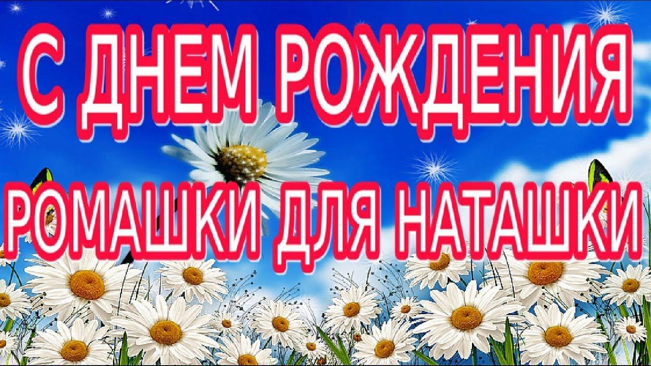 российский поздравления с днем рождения ромашки для наташки смоленске безопаснее