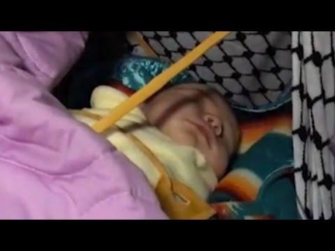 Baby born during Dakota Access Pipeline protest