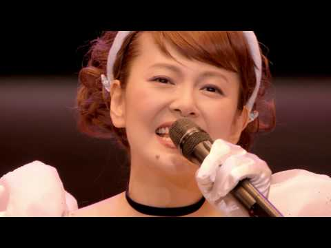 南野陽子 「NANNO 30th&31st Anniversary 」ダイジェスト