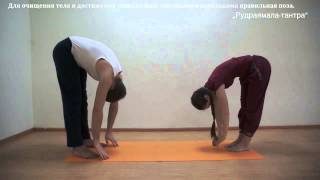 Видео-уроки Открытой йоги. Утанасана.