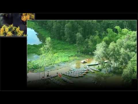 Vietnam Travel |  Gao Giong eco tourism area in Dong Thap province