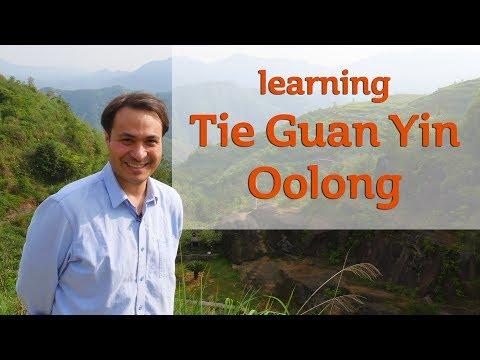 Learning Tie Guan Yin Oolong