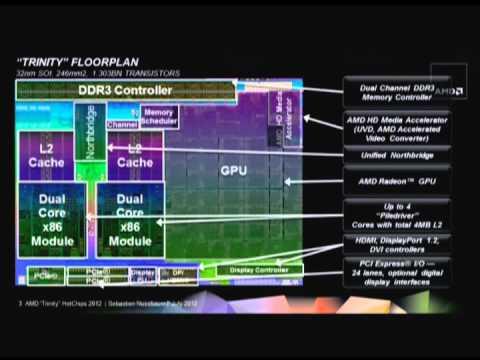 HC24-S3: Many Core and GPU