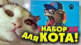 НАБОР КОТА / CAT'S BOX РАДИ ОКСИМИРОНА!