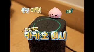 헤이~ 카카오미니, 인공지능 스피커 (놀라운 숨은기능) Kakao Ai Speaker