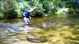 Fly Fishing the Snowy Mountains