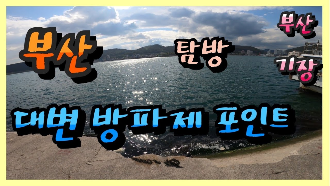 ep 41. 4K 5월 초 부산 기장 대변 방파제 낚시 포인트 탐방 Busan Gijang's feces breakwater fishing point tour