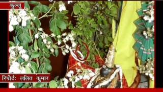 tulsi vivah story in hindi on Devbhoomi Hulchal (Himachal Pradesh)