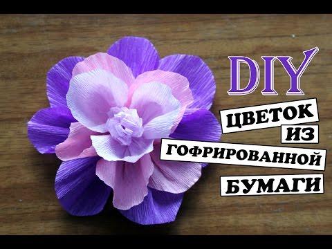 цветок из гофрированной бумаги своими руками