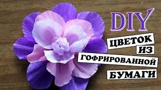 Diy: Цветок из гофрированной бумаги / Простой способ / flower of corrugated paper(Мастер класс: Как сделать цветы из гофрированной бумаги. Простой способ своими руками сделать цветы из..., 2016-05-20T16:02:35.000Z)