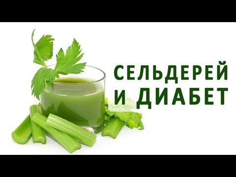 Сельдерей - полезные свойства сельдерея, польза и вред