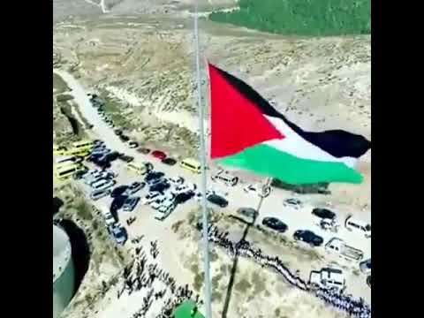 Shoutul harokah|palestina tercinta #18 desember 2017