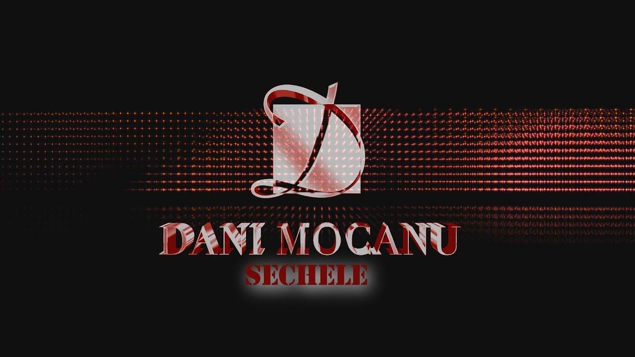 Dani Mocanu - Sechele  | Official Audio
