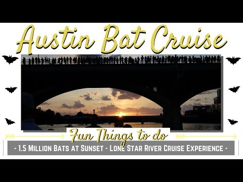 See Millions of Austin Bats on a River boat under Congress Avenue Bridge