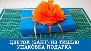 Цветок (бант) из тишью / Упаковка подарка(В этом видео я покажу вам как сделать объемный цветок (бант) своими руками из бумаги тишью. Его можно использ..., 2015-05-08T05:00:01.000Z)