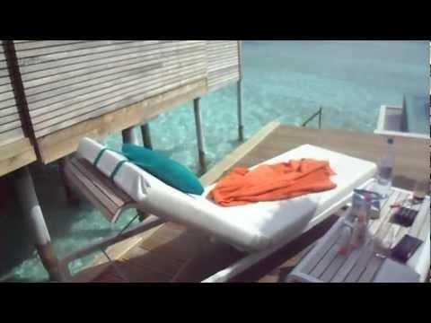 Niyama Resort - deluxe overwater bungalow #82