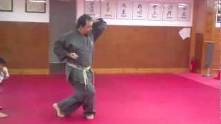 Step by Step: Jyoshinmon Shorin Ryu-Pinan Nidan