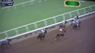 COUGAR II H, (G 3) STAKES $100,000 2017 - CURLIN ROAD !!!