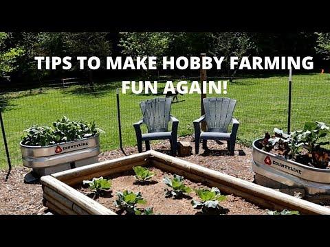 Hobby Farm Ideas For Beginners Youtube