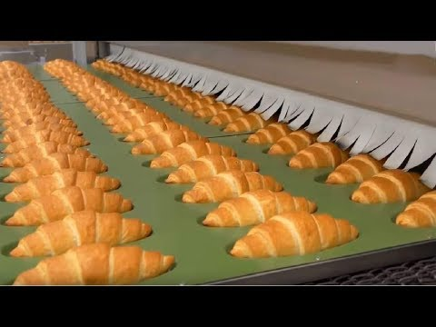The Amazing Factories That The World Is Curious About. Food Factories.