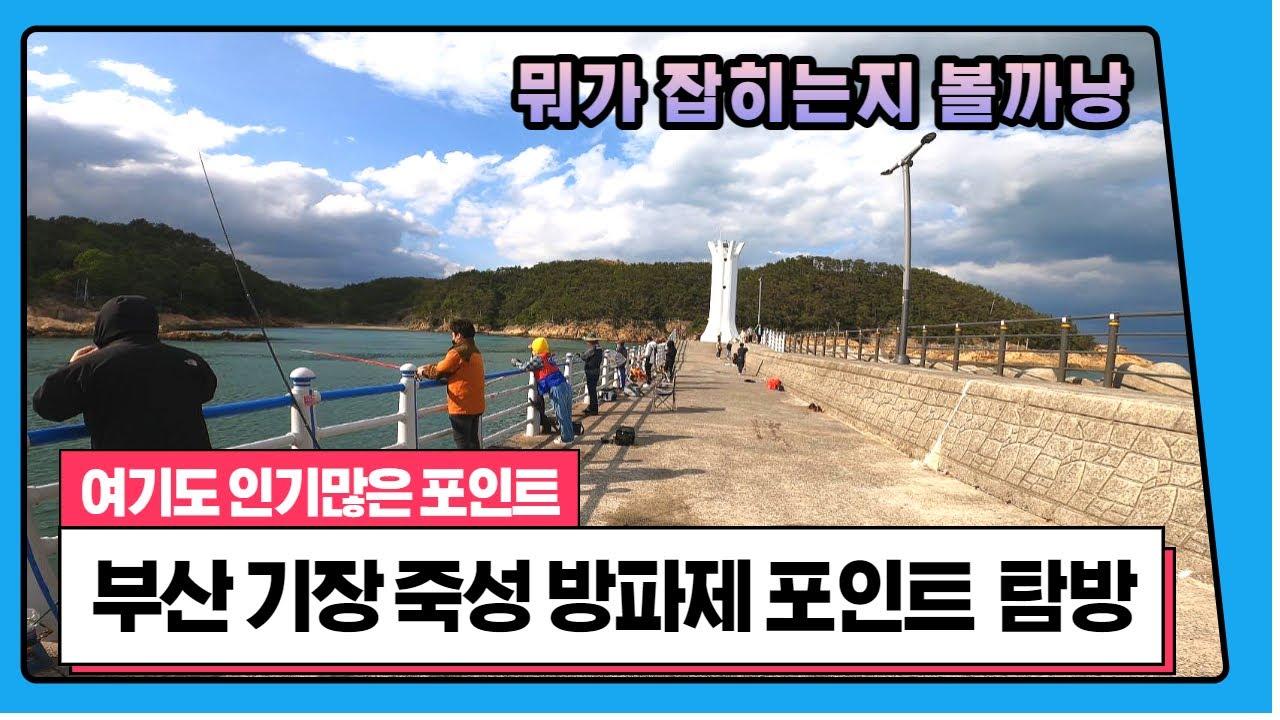 ep 42. 4K. 부산 기장 죽성방파제 낚시 포인트 탐방 Busan Gijang Jukseong breakwater fishing point tour