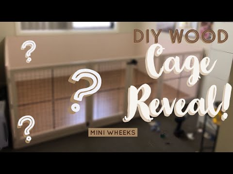 DIY Wood Cage Reveal - Pet Room Upgrade: Part 4