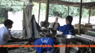 Bamboo Skewers - Bamboo Chopsticks