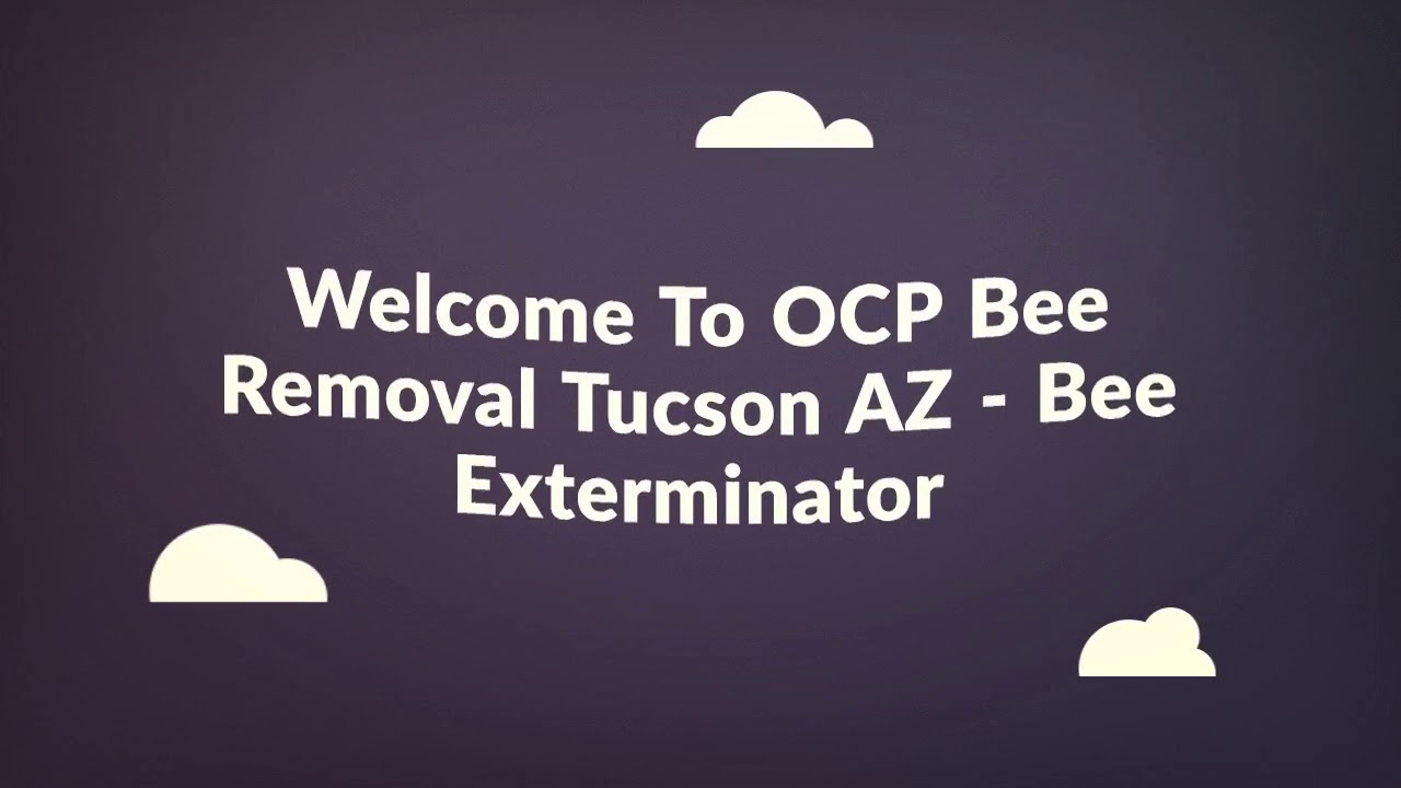 OCP Bee Removal in Tucson, AZ