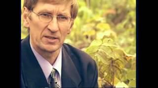 видео Травы