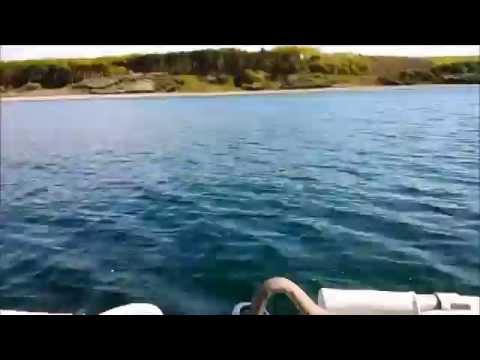 лодочный мотор yamaha f4b