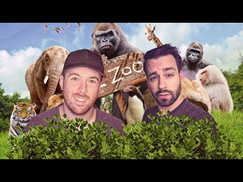 THE DREAM TEAM PLAYS HIDE AND SEEK IN A ZOO!