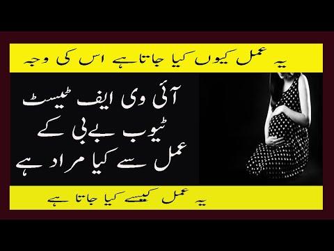 What Is In Vitro Fertilization Process In Urdu Test Tube Baby Ke Amal Se Kya Murad Kaise Kyn Hota Ha