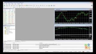 Forex Tester Professional - 5 Descargar y exportar datos desde MetaTrader 4