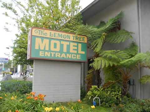 Lemon Tree Motel - Pomona (California) - United States