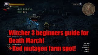 Witcher 3 Beginners guide for Death March!