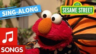 Sesame Street: Elmo's Butterfly Friend Lyric Video | Elmo's Sing Along Series