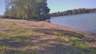 Ультралайт в августе Ловим окуня на большом озере