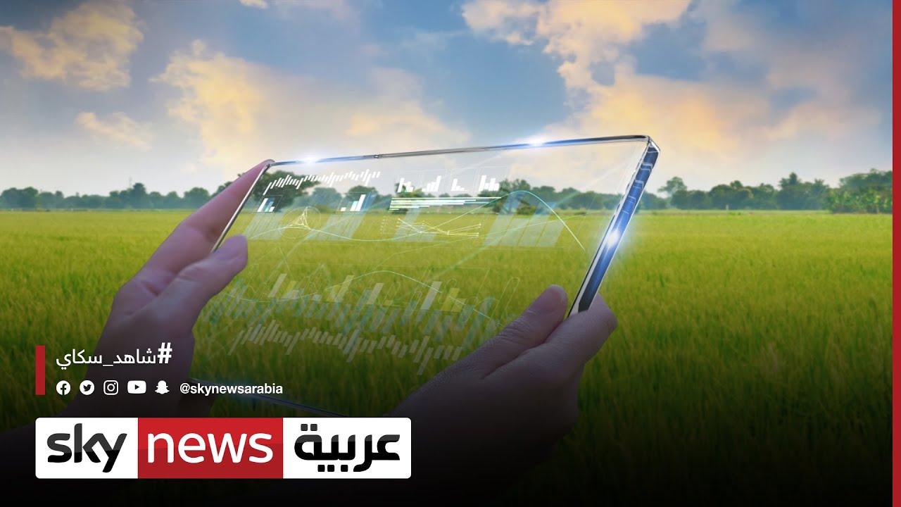 مصر.. خطة طموحة للنهوض بالزراعة رغم التحديات  | #الاقتصاد  - 18:00-2021 / 5 / 10