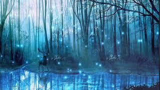 Сказочный лес Футаж для видео
