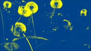 "Astronaughty  ""Hypnotic Dub"" (Vox Pop, 1995, Italy)"