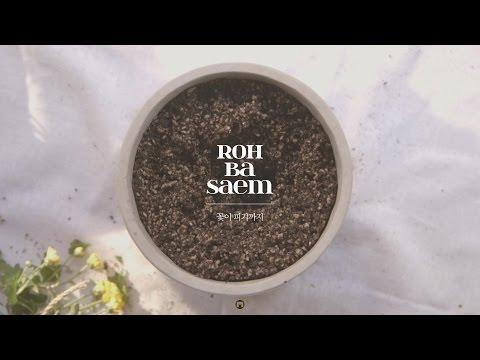 노바샘 노바샘(Roh Basaem) - 꽃이 피기까지 [Official Music video] - 리틀송뮤직(littlesong music)