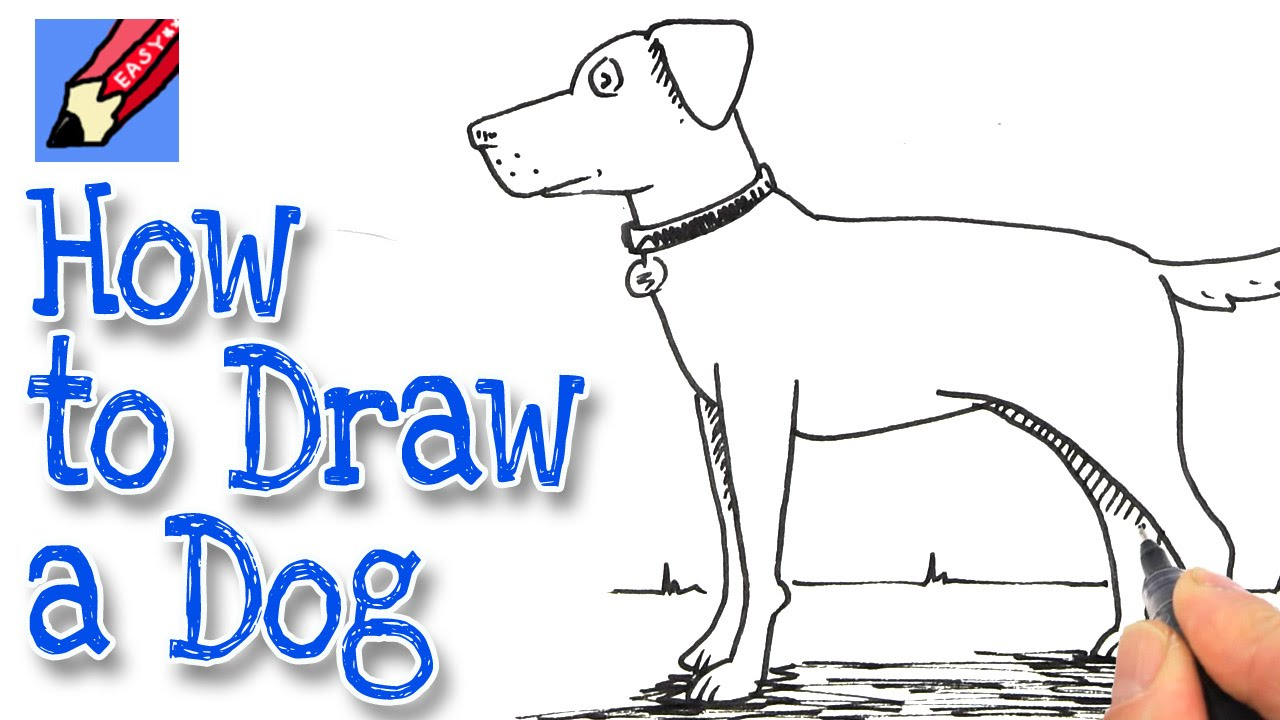 How to Draw a Dog Real Easy