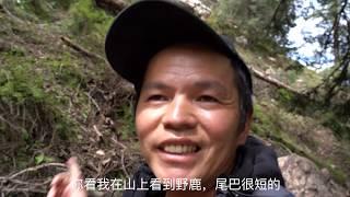 Adventures of Tibetan Primitive Forest: Exploring Death Valley