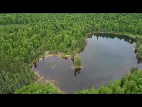 Private Bradford Lake and 115 Acres Iron Mountain, MI MLS# 1102136