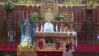Trực Tiếp Đại Lễ Chúa Thánh Thần Hiện Xuống - Quan Thầy Cộng Đoàn Giáo Khu 3  - Đền Thánh Bác Trạch