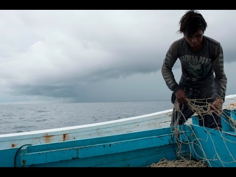 Illegal Fishing in Misool Marine Protected Area