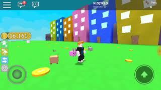 """Bermain game roblox """"pets simulator"""""""
