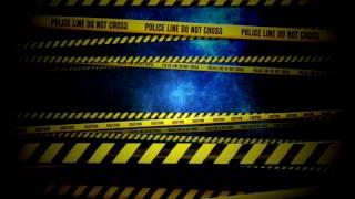 �������� ���� Видеофон Police Line ������