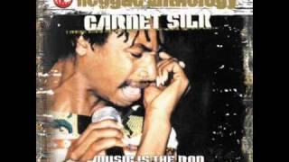 Garnet Silk - Zion In A Vision ( Friends For Life Riddim )