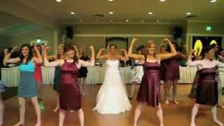 flash mob my sisters wedding lmfao sexy and i know it